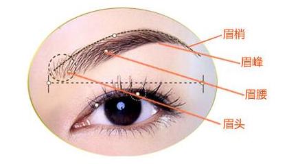 眉毛种植有哪些方法
