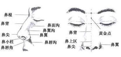 武汉博美综合隆鼻的主要目的