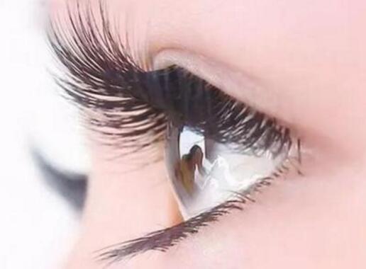 成都艾尚柏雅睫毛种植的效果