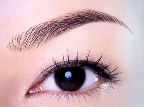 牡丹江王维群眉毛种植方法有哪些