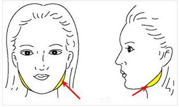 玉林华美磨骨瘦脸 塑造理想瓜子脸