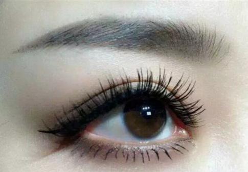 广州眉毛种植价格 提升你的颜值