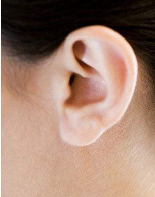 全耳再造手术过程 注意事项