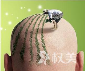 北京毛发移植哪家医院比较好 头发稀疏的根本原因是什么