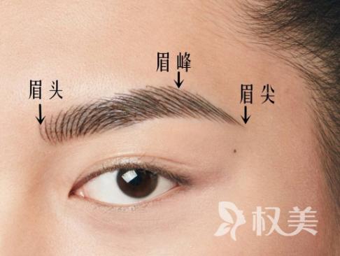 眉毛稀少怎么办 眉毛种植无排异反应且成活率较高