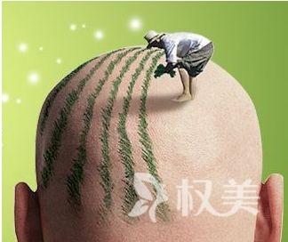 植发疼吗 杭州植发价格是多少