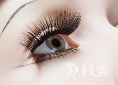 怎么治疗脂溢性脱发 上海睫毛种植价格贵不贵