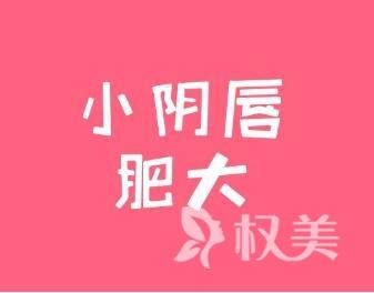 上海复旦大学附属中山医院小阴唇缩小术有哪些优势