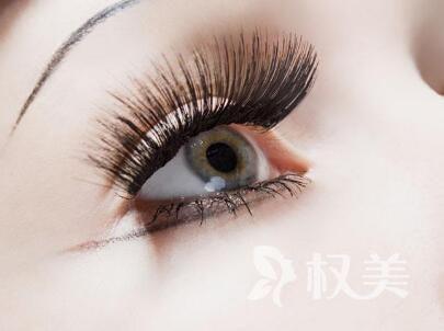柳州贞韩植发价格表 睫毛种植多少钱
