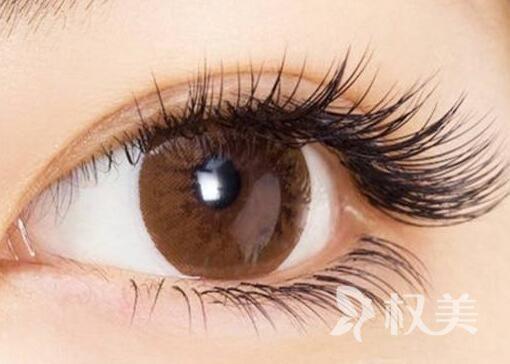 柳屋生发液使用方法 睫毛种植多久见效