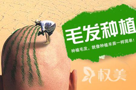 北京瑞丽诗植发整形医院(长岛总院) 7 8 月份植发价格表