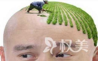 北京世熙疤痕植发手术安全吗  不会对身体有任何损伤