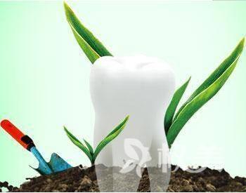 上海种植牙医院哪家好 上海做种植牙需要多少钱