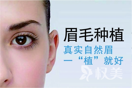 重庆西南植发医院植眉多少钱 眉毛种植手术疼不疼