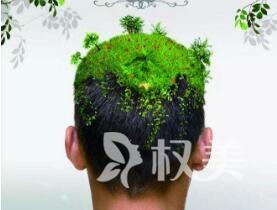 头顶脱发原因及治疗方法 广州植德植发医院做头发种植多少钱